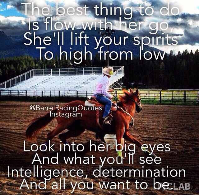 Barrel Racing Quotes Fascinating Barrel Quote  Cowgirl Sayings  Pinterest  Barrels Horse And Rodeo