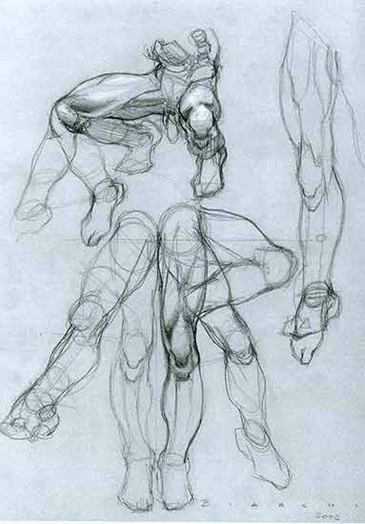 Anatomical Drawings Sketchbook Artist Study Resources For Art