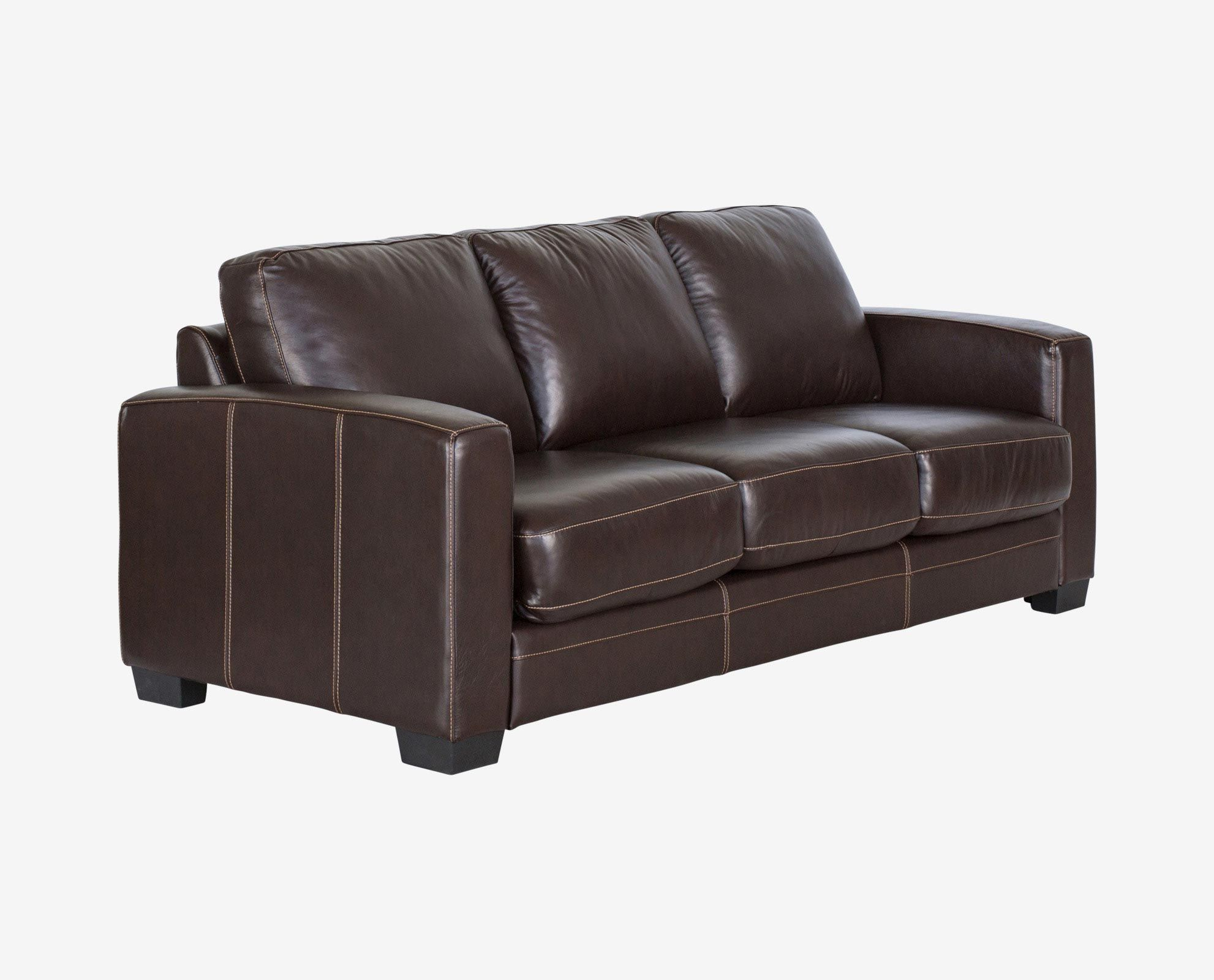 Dania Leather Sleeper Sofa Review Home Co
