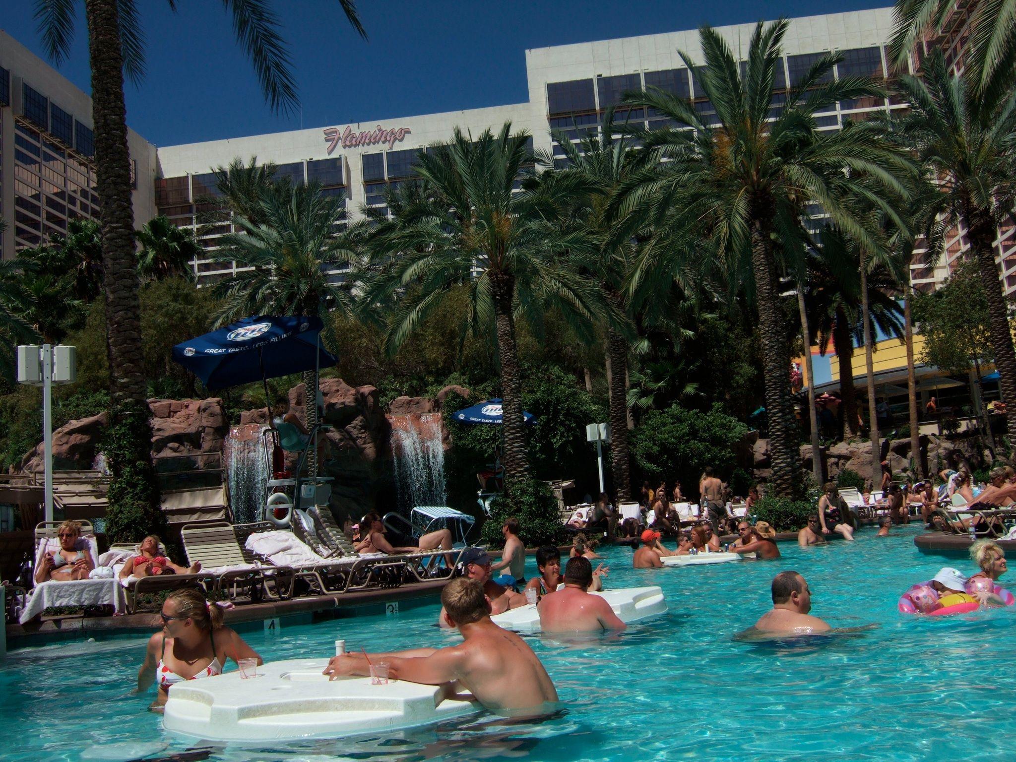 Flamingo Go Pool Las Vegas Flamingo go pool, Vegas baby