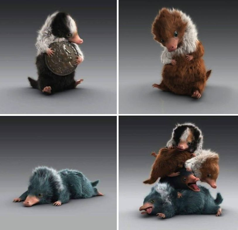Image result for niffler and babies