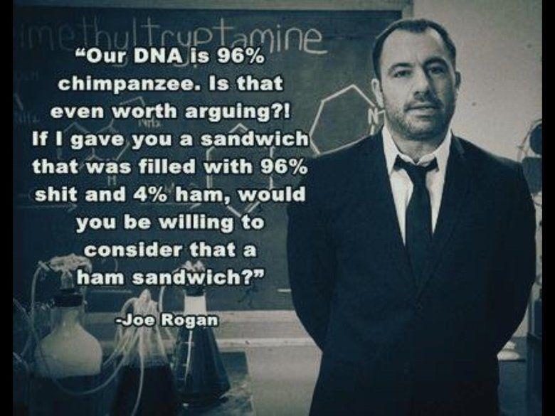 Oh Joe Joe Rogan Joe Rogan Quotes Atheist