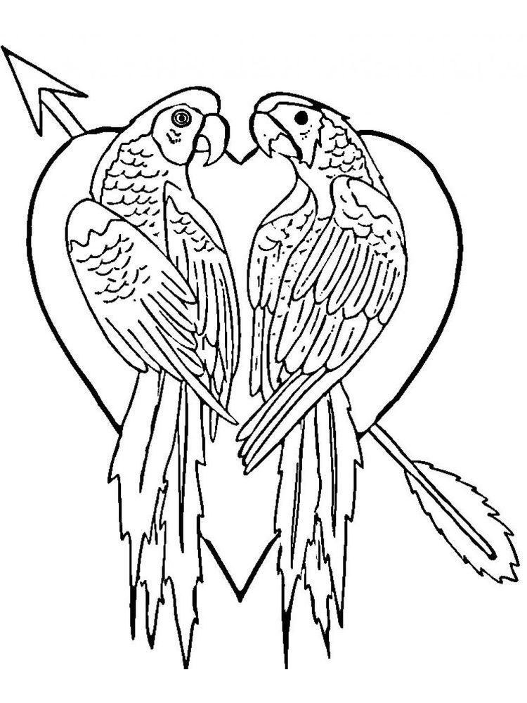 Parrot Coloring Pages To Print Parrots Are One Of The Most Famous And Popular Bird Speci Love Coloring Pages Kids Printable Coloring Pages Bird Coloring Pages