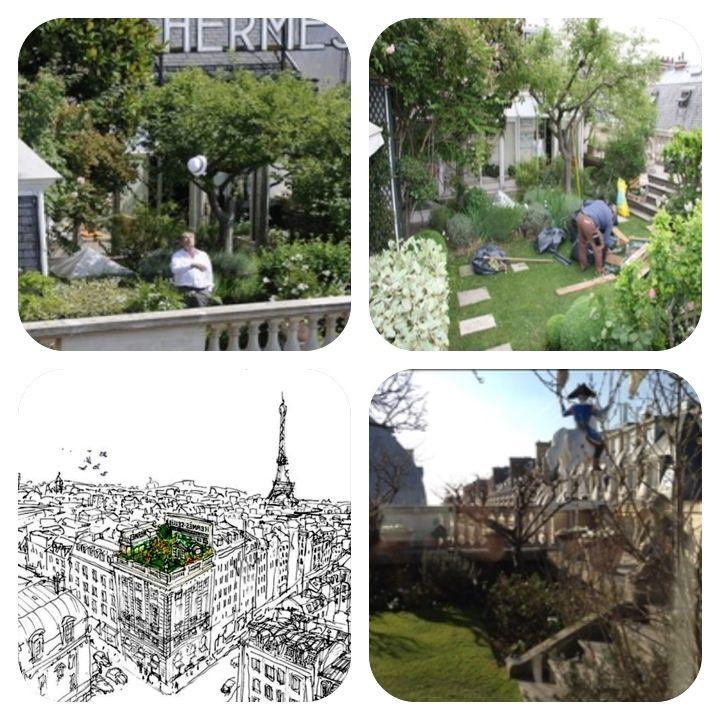 Hermès Rooftop Garden , Paris | Rooftop garden, Roof ...