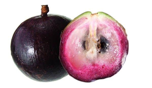 643.750x0.jpg 600×350 pixels | Star apple, Apple tree, Purple fruit