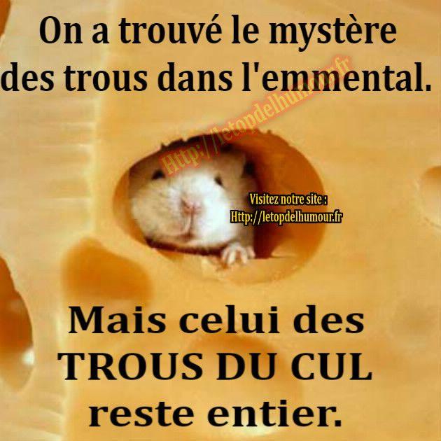 """Les """"Stupid Zèbres"""" c'est nous... - Page 10 Ce13e16f428b54fb7bace6f9895b2c99"""