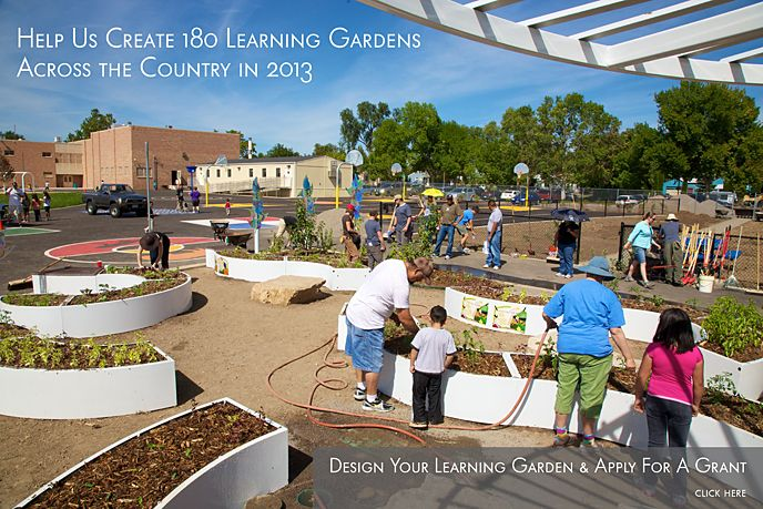 Check Out The Kitchen Community For School Gardening Grants From