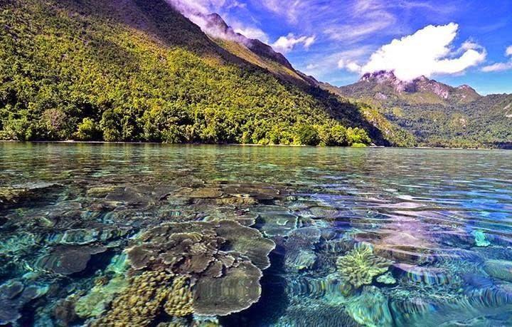 Pulau Ora : Kerajaan Bawah Laut di Maluku Tengah - Blog