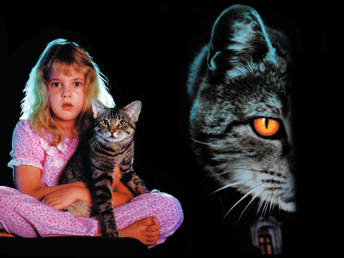 Cat's Eye Cats eye movie, Cats, Halloween movies