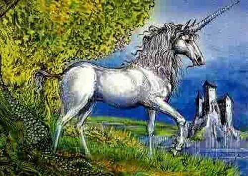 Unicorn Art 11.jpg (500×356)