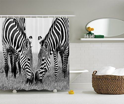 Animal Shower Curtain Zebra Print Decor By Ambesonne National Park And Zebras African Wildlife Picture