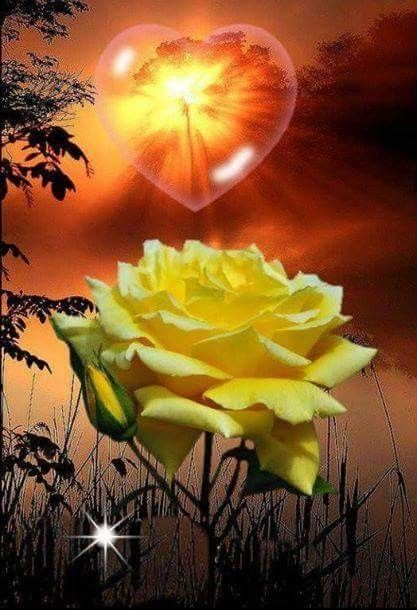 Pin By Dawn Washam On In Loving Memory Mom Online Images Image