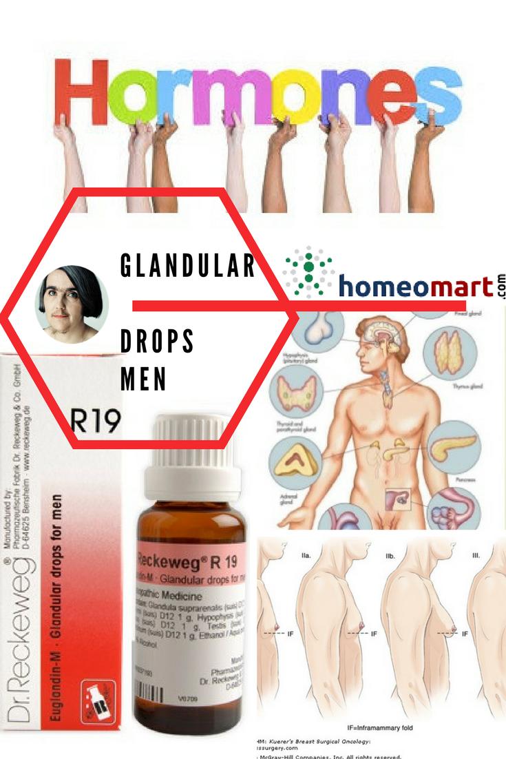 Dr Reckeweg R19 glandular drops for men, Buy online get upto