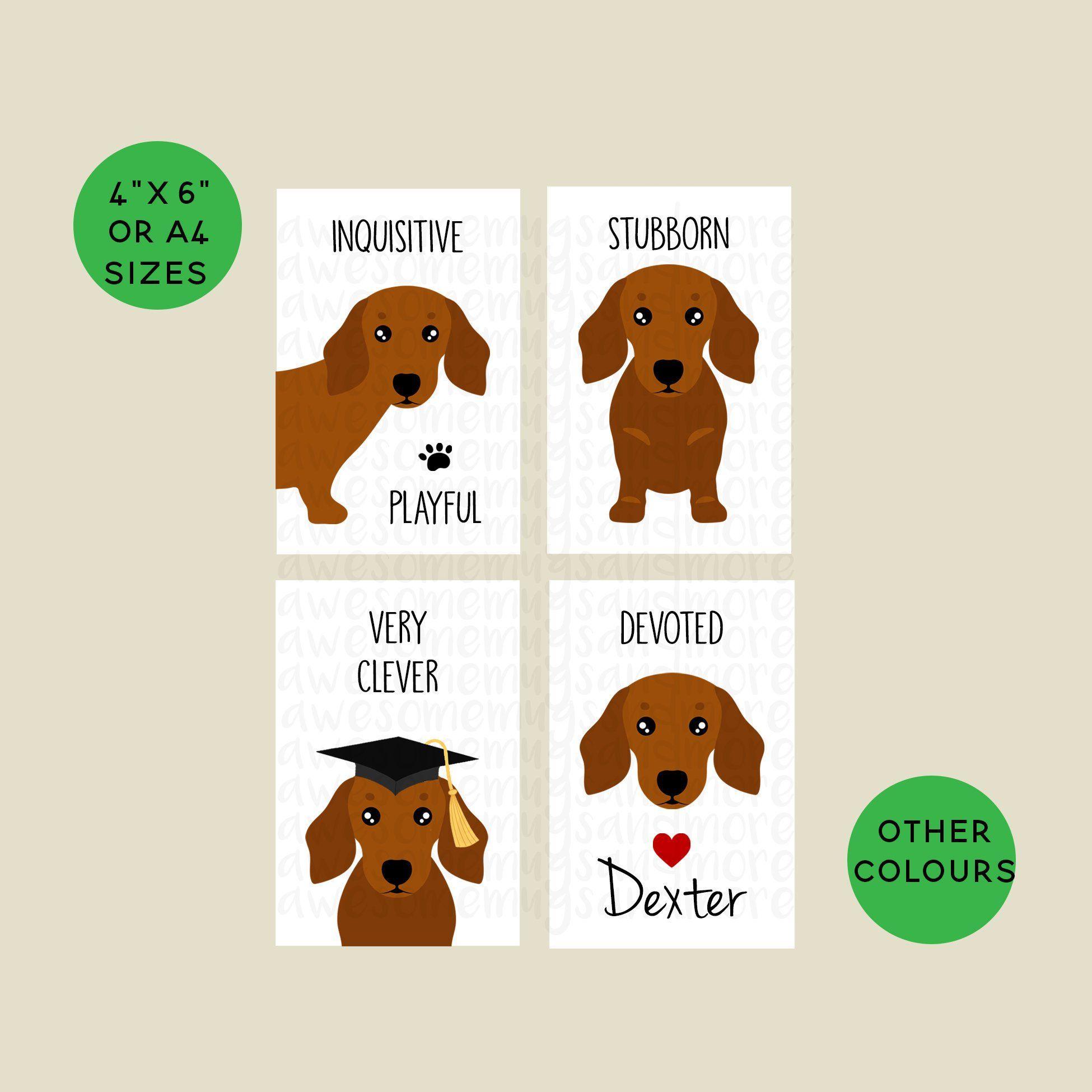 Set Of 4 Dachshund Prints 4 X 6 A5 Or A4 Sizes Custom Dog