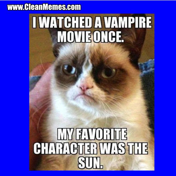 Cleanmemes Cleanfunnyimages Www Cleanmemes Com Grumpy Cat Quotes Funny Grumpy Cat Memes Grumpy Cat Humor