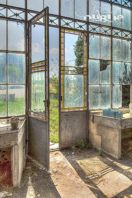 L'orangerie abandonné