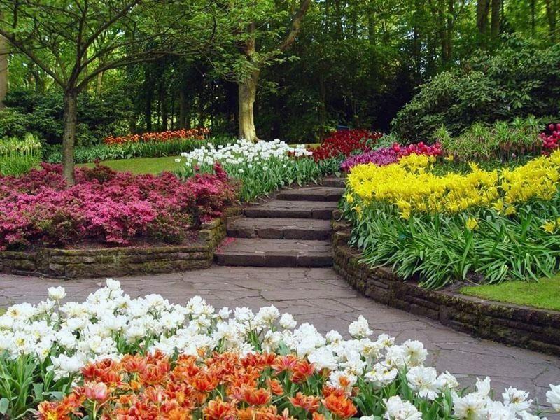 Jardines PAISAJES y JARDINES Pinterest