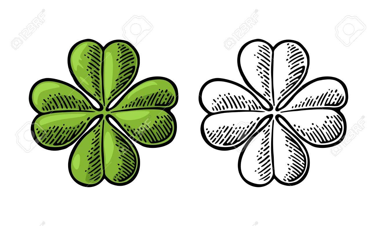 Good Luck Four Leaf Clover Vintage Color And Black Vector
