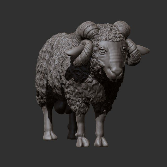 Ram 3D Model .max .c4d .obj .3ds .fbx .lwo .stl 3DExport