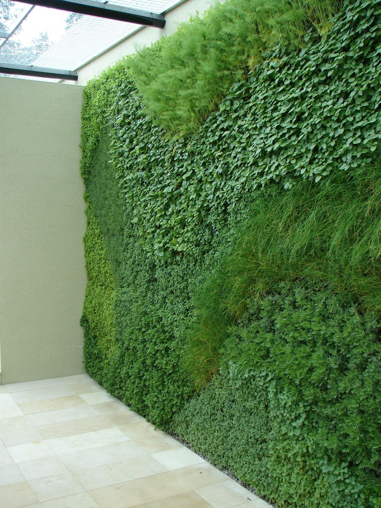 a green wall planted with easy to grow herbs. Vertical