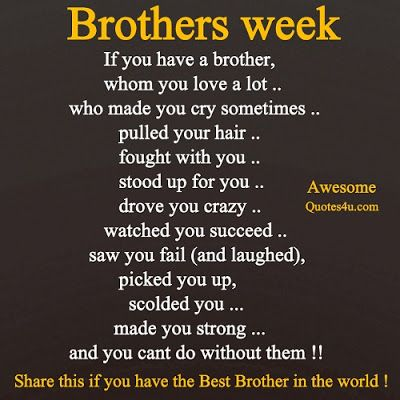 Awesome Quotes Brothers Week Brother Quotes I Love My Brother Sibling Quotes