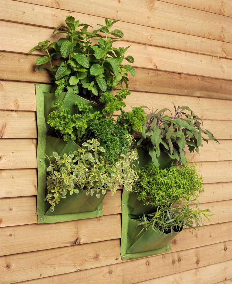 Pflanztaschen Selber Machen pflanztasche für die wand laubgrün balcony wände