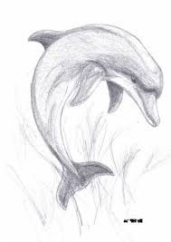 Resultado De Imagen De Cvety Karandashom Risunki Dolphin Drawing Cool Art Drawings Art Drawings Sketches Simple