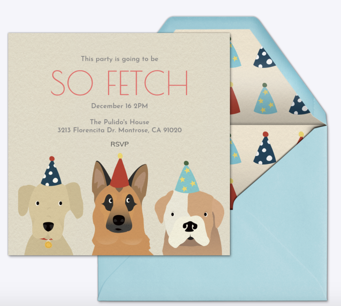cutest doggie themed party invite so
