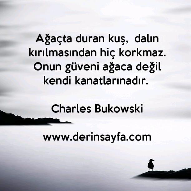 Ağaçta duran kuş,  dalın kırılmasından hiç korkmaz. Onun güveni ağaca değil kendi kanatlarınadır.- Charles Bukowski
