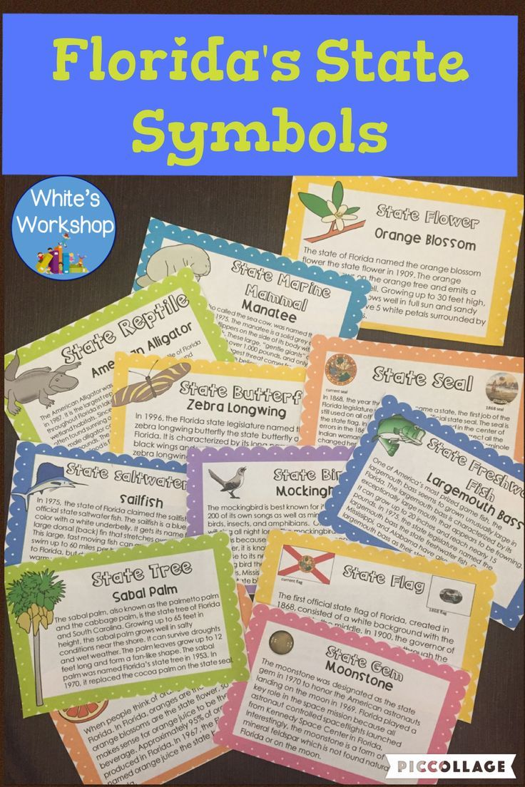 Florida Symbols Activities