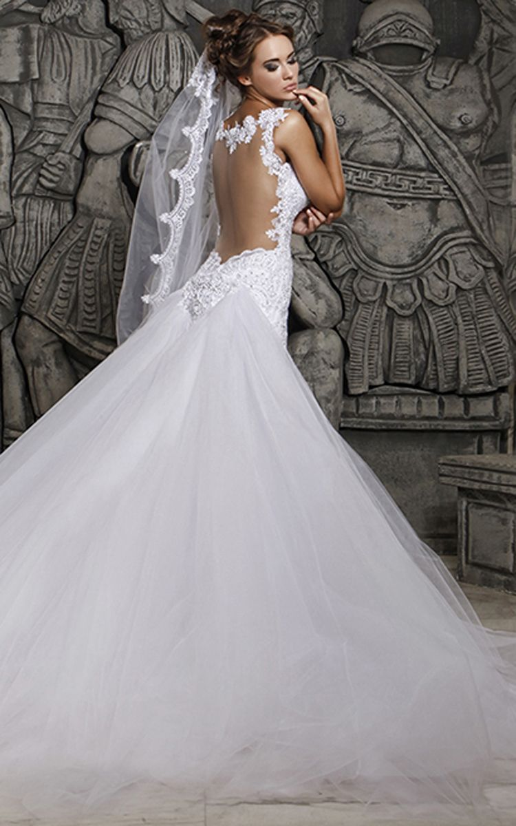 Magnificent Tulle Mermaid Lace Wedding Dress with Wedding Veil ...