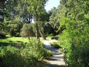 Attirant Encinitasu0027s Quail Botanical Gardens Now Called San Diego Botanic Garden