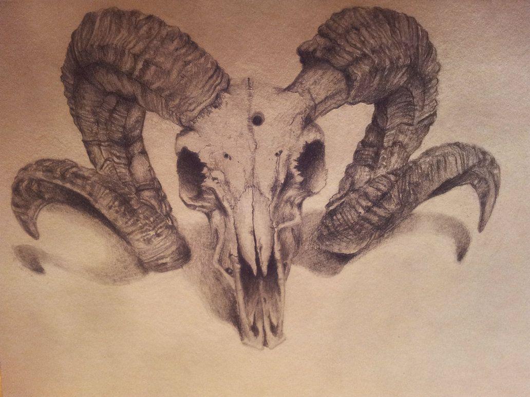 ram skull by backhendl ink inspiration pinterest ram skull