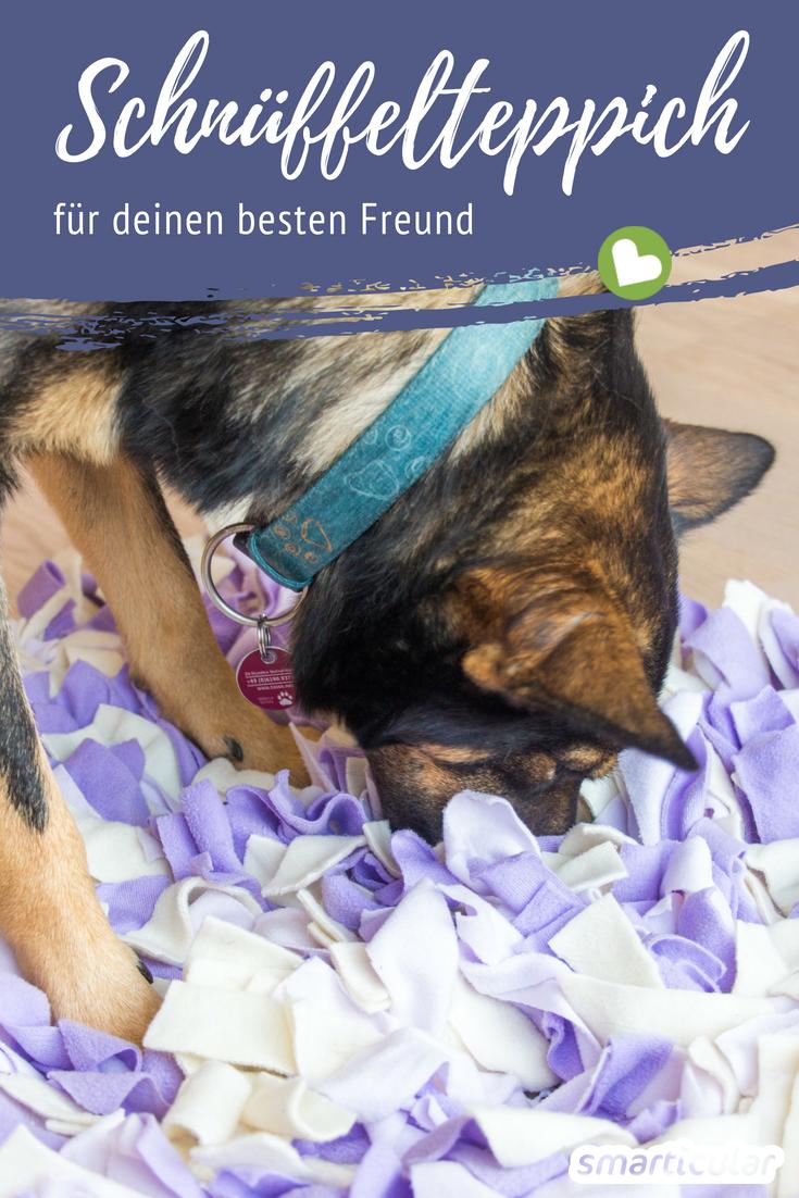 DIY-Schnüffelteppich für Hunde und Katzen selber machen aus ...