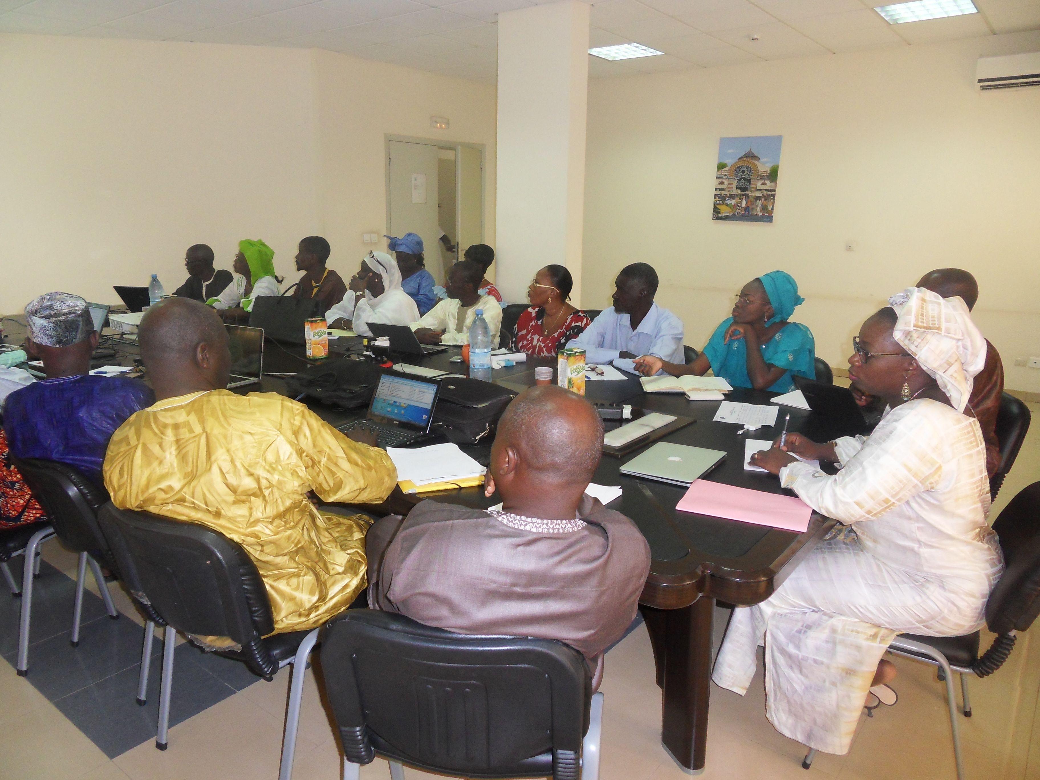 Participants de la réunion du SEN Elargi