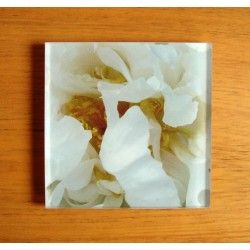 Portavasos en acrilico de Equilibrio. www.camilasanint.com