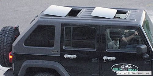Wild Boar Products Jeep Fastback Front Rear Sunroof Jeep