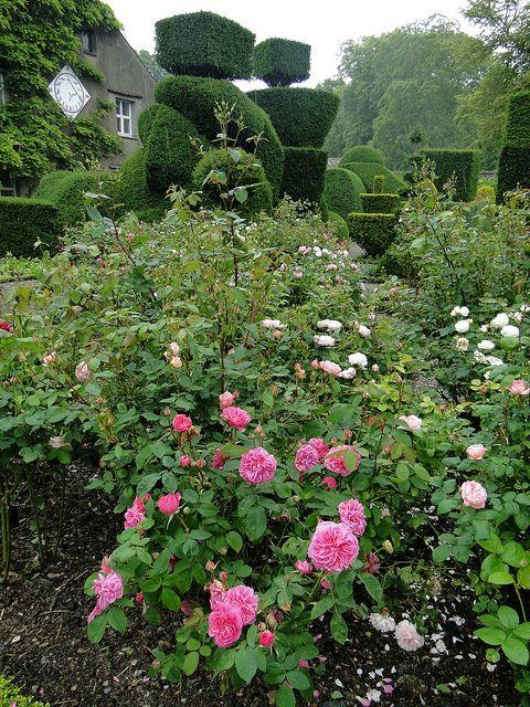 Levens Hall Gardens, Cumbria, England