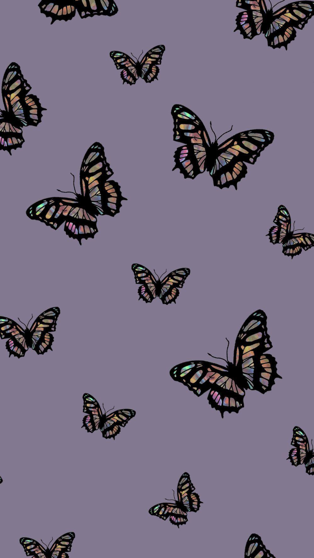 Farfalla Iphone Wallpaper Estetica Ipcwallpapers In 2020 Butterfly Wallpaper Iphone Art Wallpaper Iphone Trippy Wallpaper