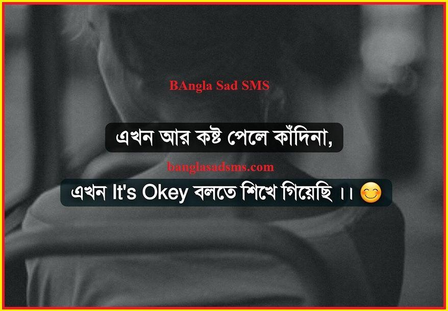 Pin on Bangla sad sms