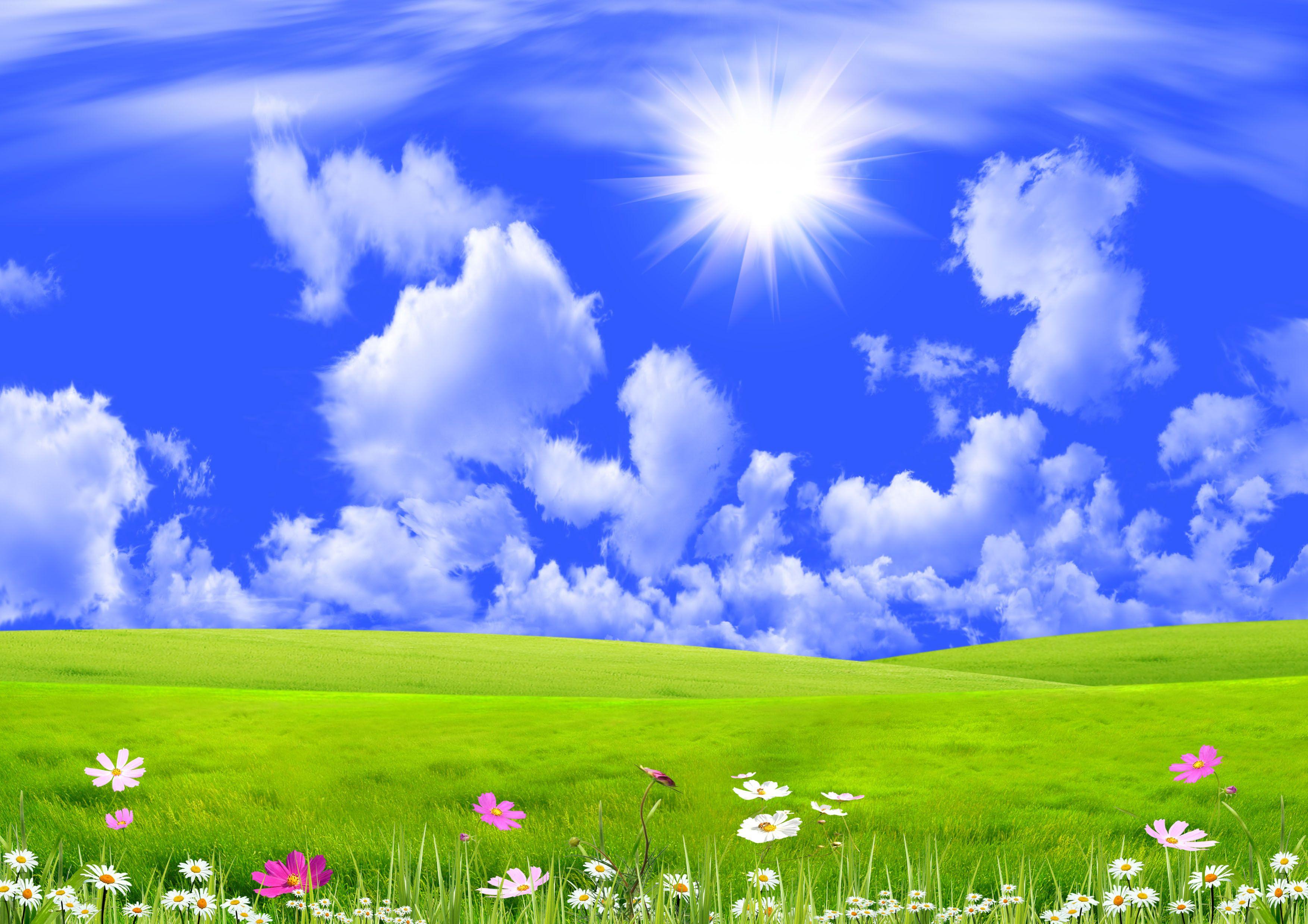 Beautiful Spring Fresh Grass Sun Skies Cloud Beautiful Nature Wallpaper Nature Wallpaper Sunshine Wallpaper