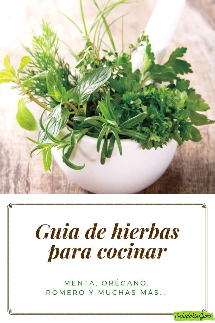 Guia De Hierbas Para Cocinar Menta Orégano Romero Y