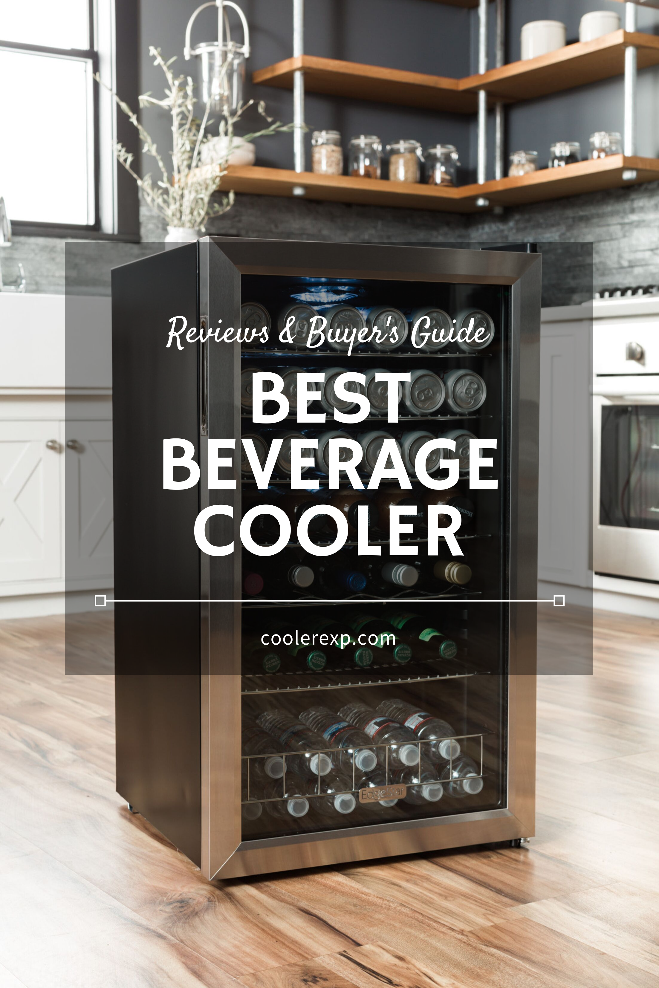 Best Beverage Cooler Reviews List of TopRated in 2020
