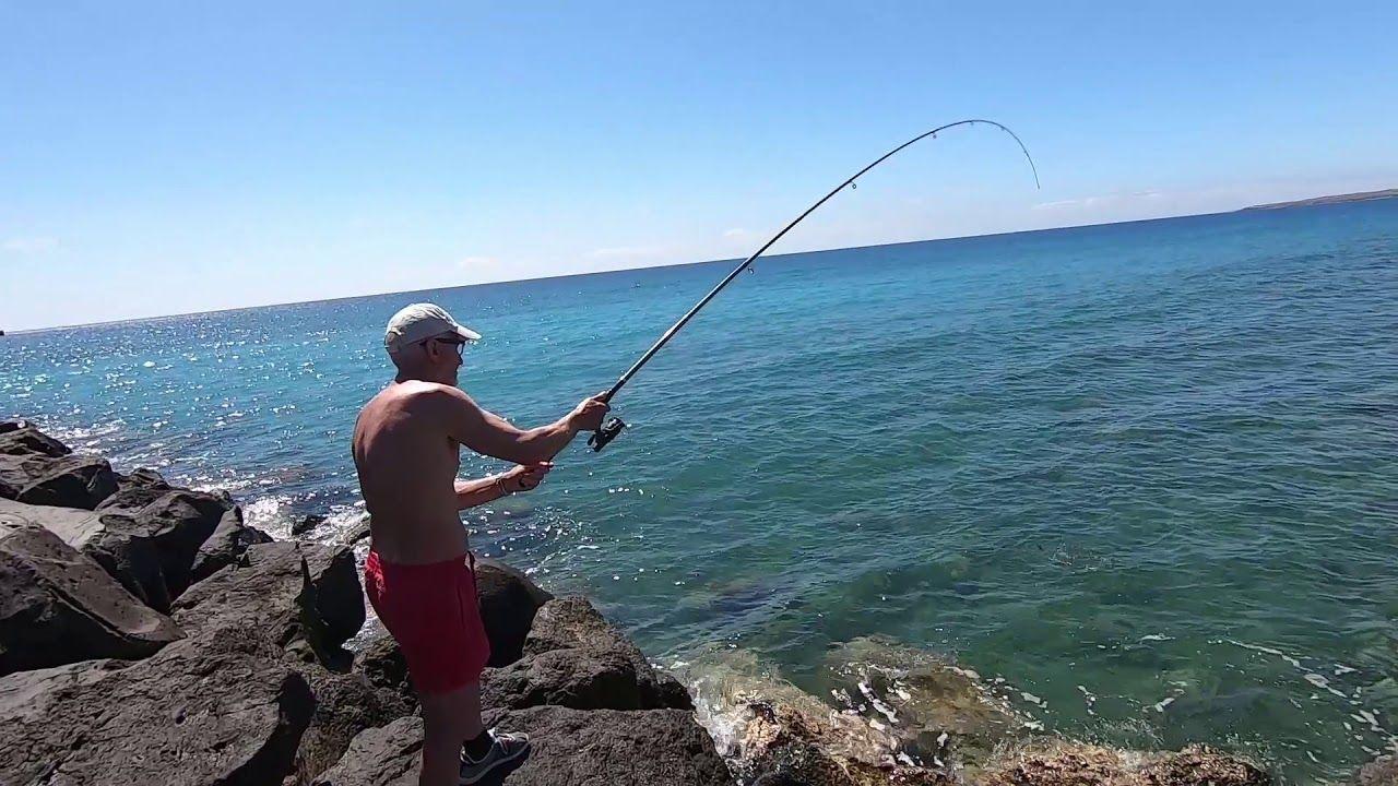 bolognese pesca mare