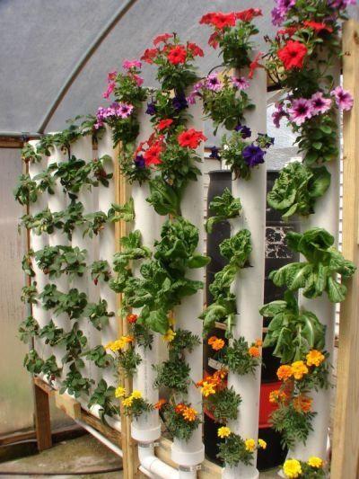 Hydroponics Vertical Garden Diy Verticle Garden Garden 400 x 300