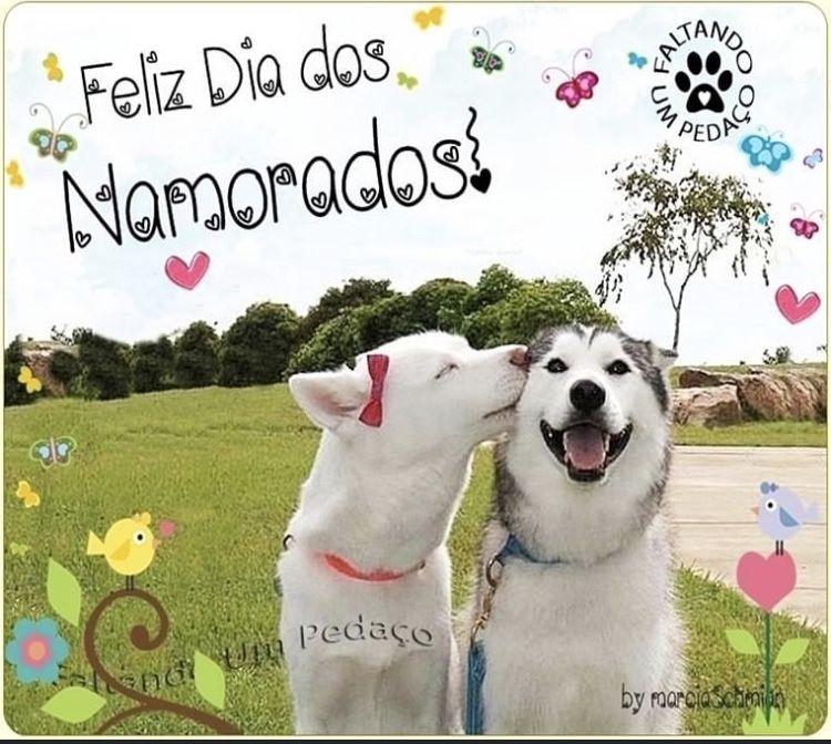 #namorados #diadosnamorados #bomdia #buenosdias #frases #amor #vidaqueimporta #marciaschmian