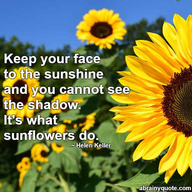 i think i need to take some lessons from a sunflower ...