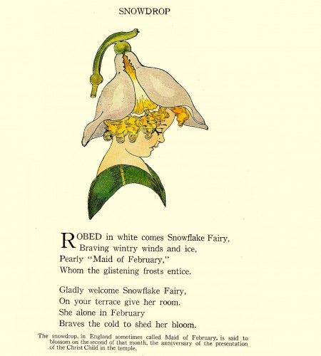 Pin By Linda Marven On 02 Feb Snowdrop Light Childrens Poetry Flower Fairies Kids Poems