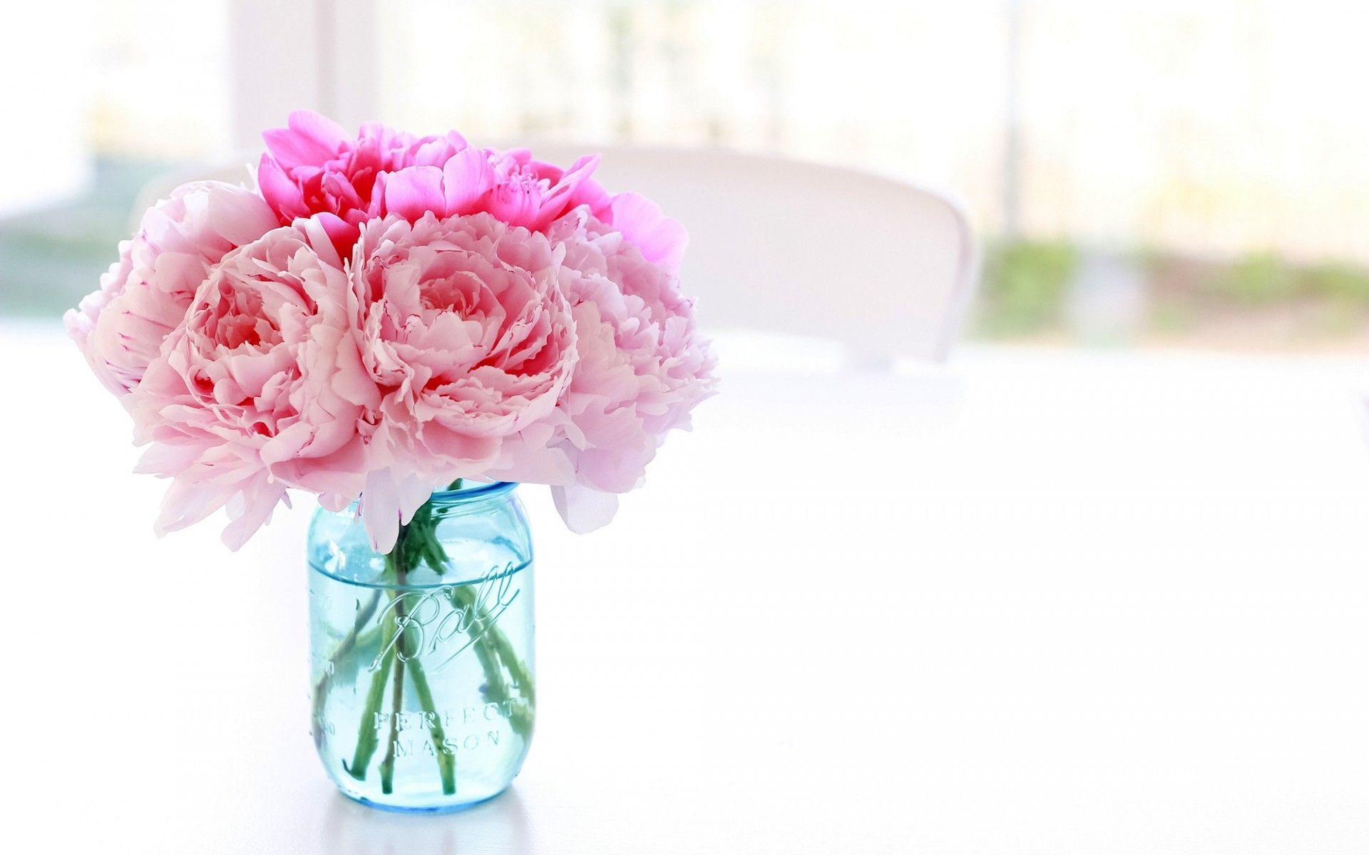 Download Wallpaper Peonies Flowers Pink Pot Jar Vase Blue Table Chair Flowers Resolution 1920x1200 Peony Wallpaper Pink Flowers Flowers Fantastic flower vase wallpaper images