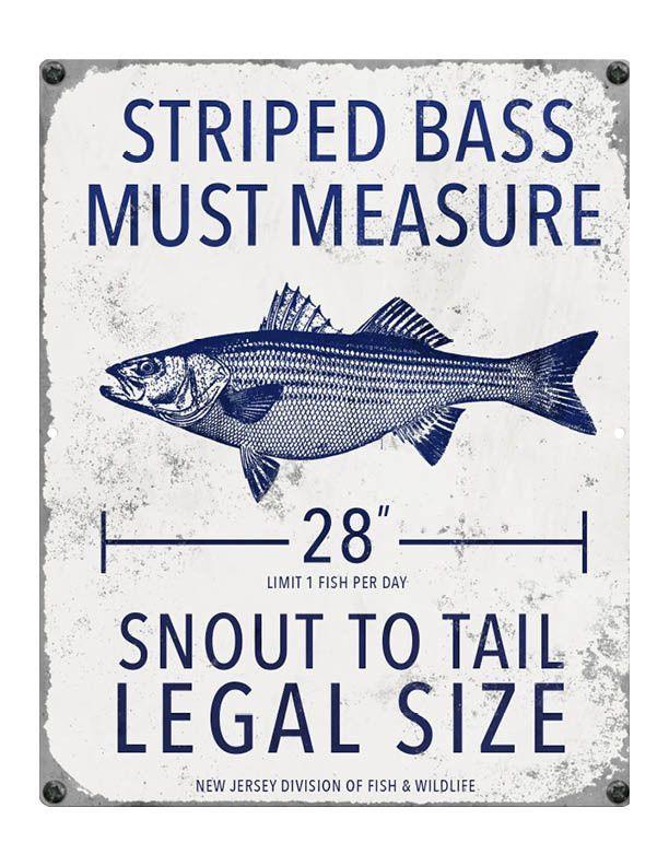 New Jersey Fishing Regulations: Striped Bass
